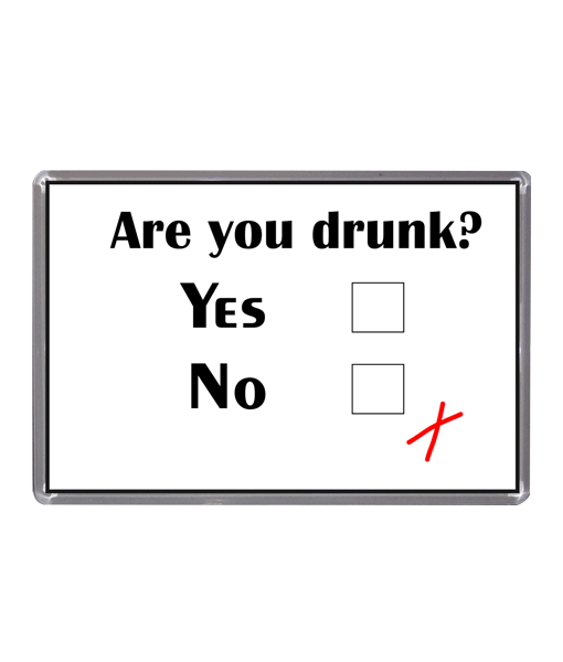 Are You Drunk? – Magnet Gifts For Him