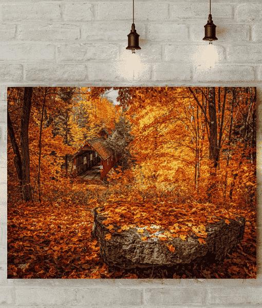 Autumn Trees Canvas Picture