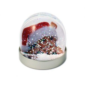 Photo Snow & Glitter Globes Christmas