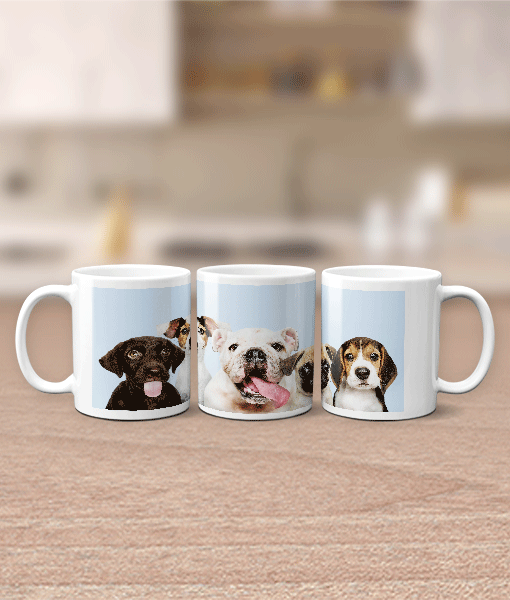 Panoramic Photo Mug Family