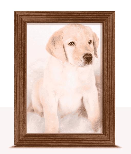 6″ X 4″ Framed Photo Print Photo Gifts